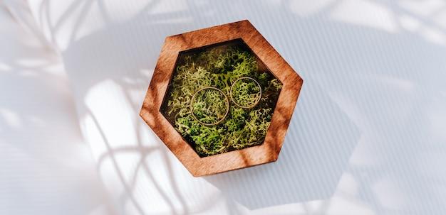 Duas alianças de casamento em uma caixa de madeira com uma planta de musgo em uma superfície branca