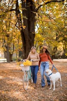 Duas amigas andando no parque outono amarelo com cachorro e bicicleta