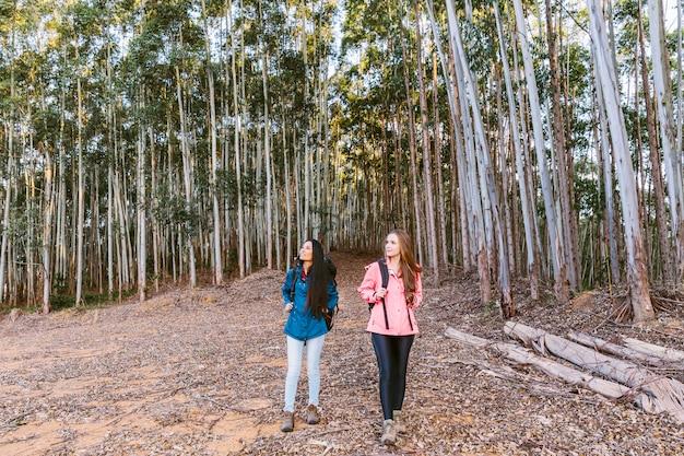 Duas amigas caminhando na frente de árvores altas