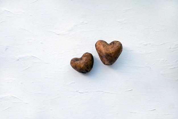 Duas batatas cruas. batatas como um coração. duas batatas cruas no fundo branco de madeira. batatas como um coração. conceito de amor de ecologia. produtos alimentares frescos.