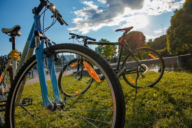 Duas bicicletas estacionadas em um parque da cidade sob a luz contrastante do ambiente