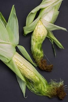 Duas espigas de milho com folhas e seda de milho fundo preto camada plana