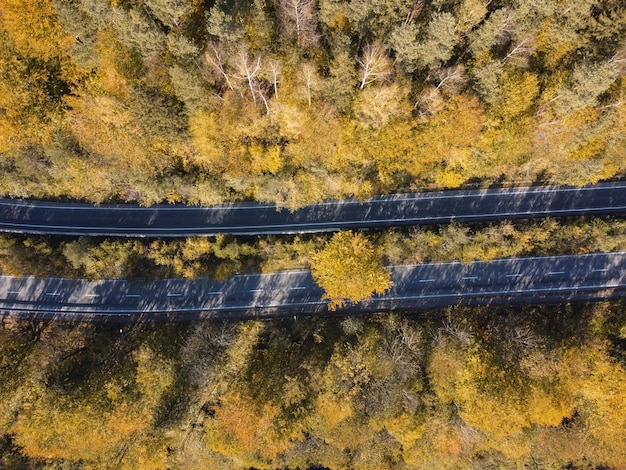 Duas estradas através da floresta de outono e árvores amarelas, vista superior