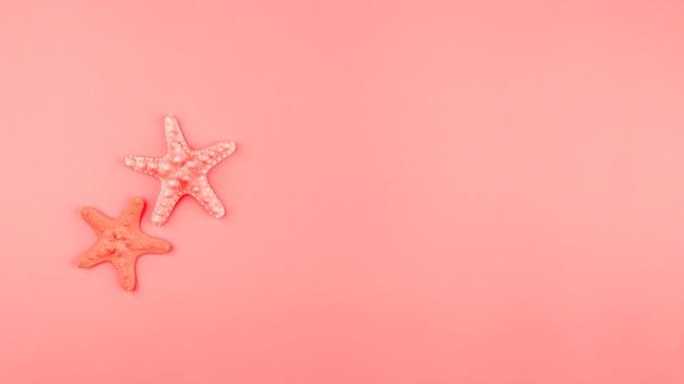 Duas estrelas do mar no fundo coral com espaço de cópia
