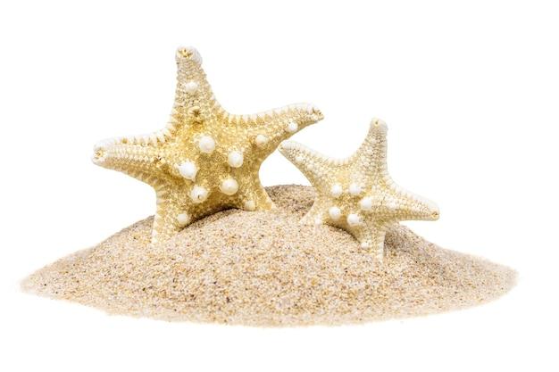 Duas estrelas peixes na areia com quadris, isolado