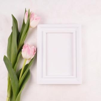 Duas flores de tulipa com moldura em branco na mesa