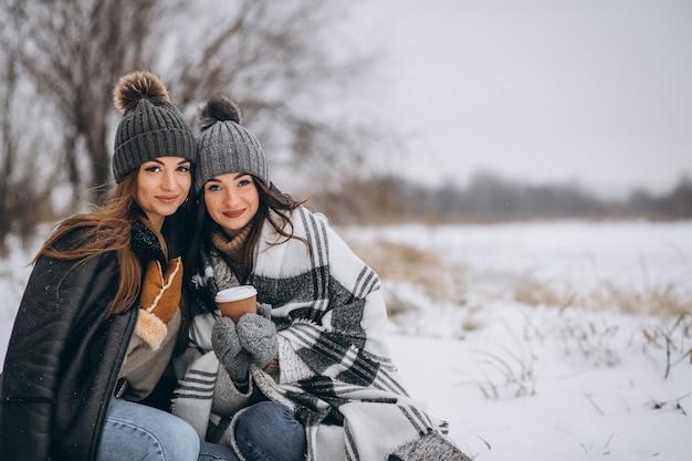 Duas garotas caminhando juntos em um parque de inverno