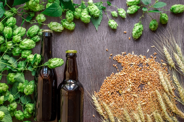 Duas garrafas de cerveja com trigo e lúpulo