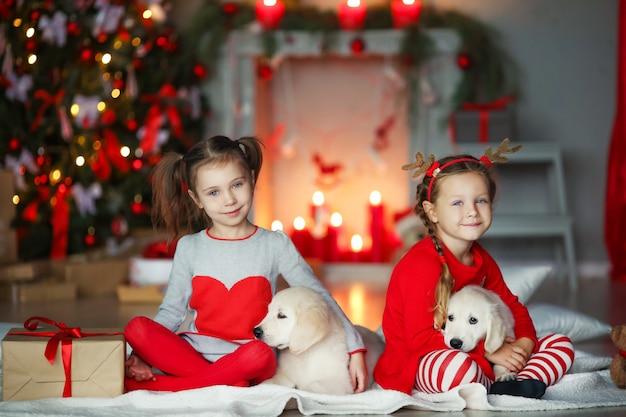 Duas irmãs com cães de estimação debaixo de uma árvore de natal.