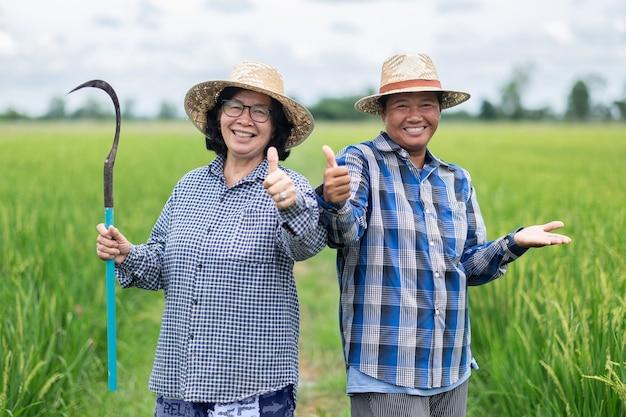 Duas jovens camponesas asiáticas postavam-se alegres nos verdes campos de arroz