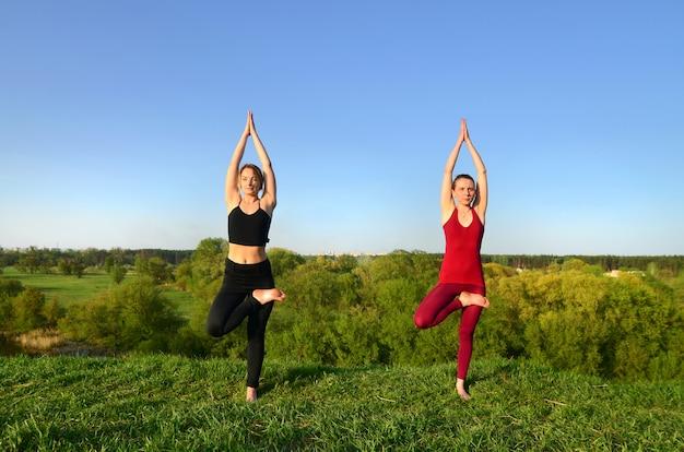 Duas jovens de cabelos louro em ternos de esportes praticar yoga em uma pitoresca colina verde ao ar livre à noite. o conceito de esporte exercício e estilos de vida saudáveis