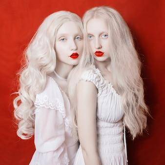 Duas lindas meninas loiras com longos cabelos brancos em vestidos brancos sobre um fundo de guindaste