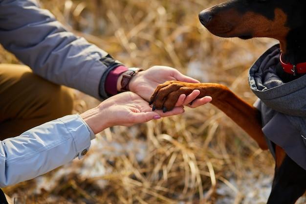 Duas mãos família e pata de cachorro - mulher, homem e doberman
