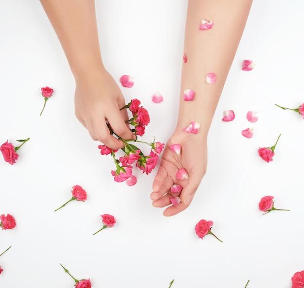 Duas mãos femininas com pele lisa, fundo branco com botões de rosa