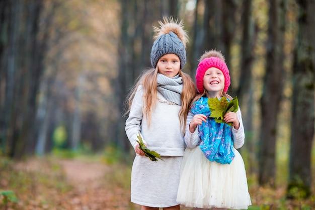 Duas meninas adoráveis na floresta no dia ensolarado quente de outono