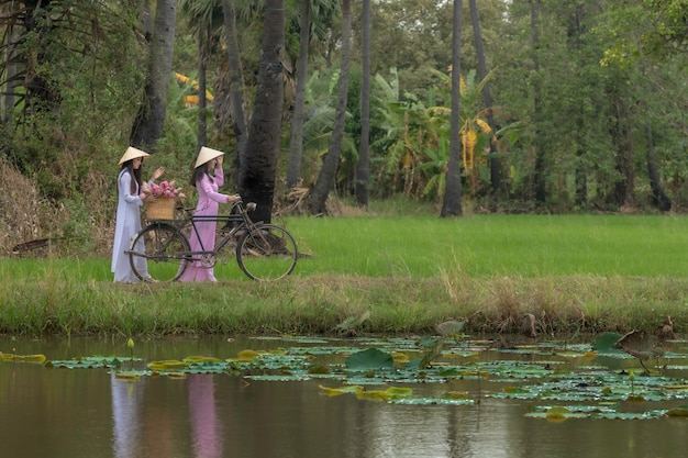 Duas meninas asiáticas a rosa tradicional do país do vietnã. o carrinho de bicicleta traz as vendas da lotus.
