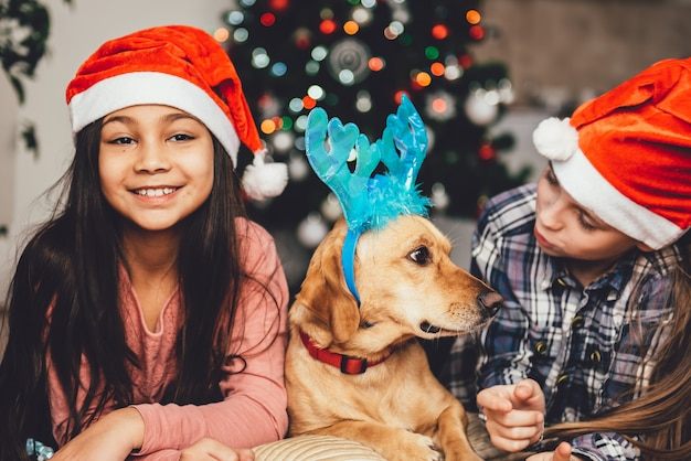 Duas meninas e o cachorro deitado na frente da árvore de natal