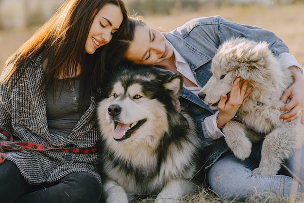 Duas meninas elegantes em um campo ensolarado com cães