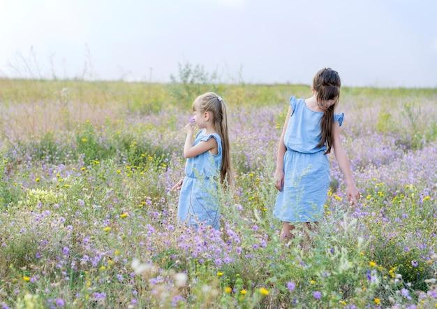 Duas meninas em vestidos azuis idênticos estão no campo entre flores silvestres