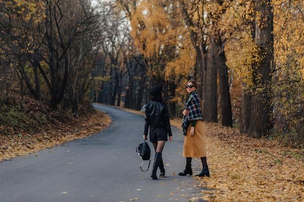Duas moças sorridentes acolhedoras andar na estrada de parque outono