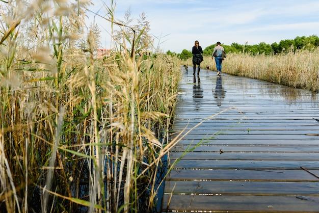 Duas mulheres andam seus cães na passarela de madeira de um lago.