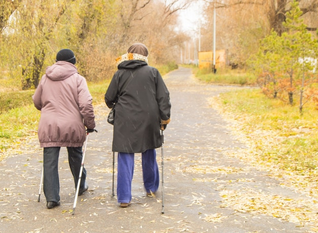 Duas mulheres aposentadas vestindo jaquetas estão praticando caminhada nórdica em um parque de outono no meio das árvores