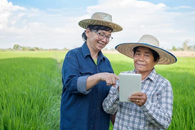 Duas mulheres de agricultores asiáticos sorriem e usando computador tablet inteligente na fazenda verde.
