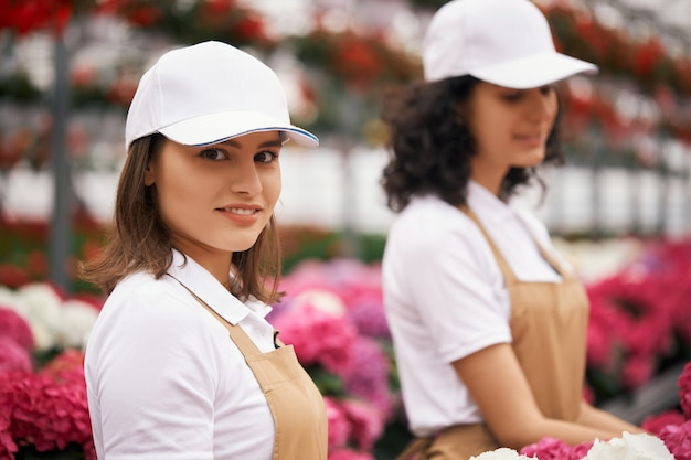 Duas mulheres uniformizadas plantando hortênsias em uma estufa