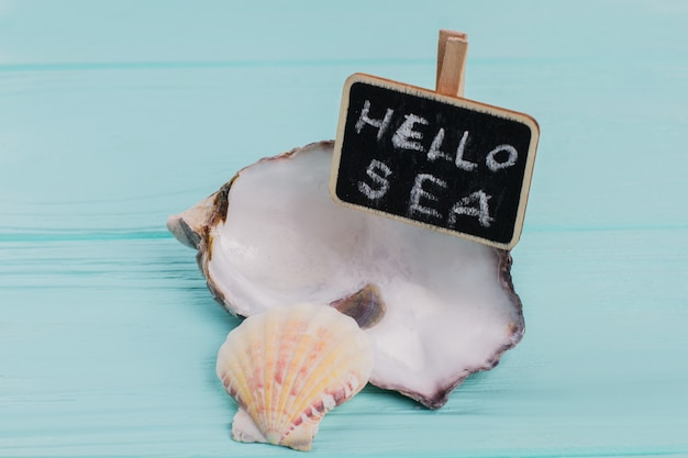 Duas pequenas conchas com quadro-negro na mesa azul. helllo mar na lousa.