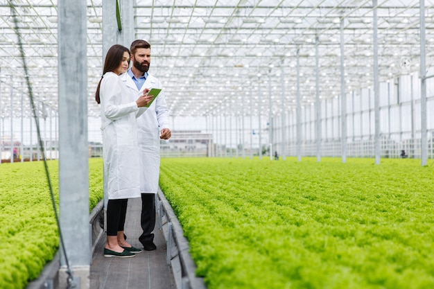 Duas pesquisas homem e mulher examinar vegetação com um comprimido em uma estufa toda branca