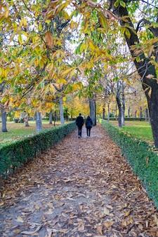 Duas pessoas caminhando por um caminho cheio de folhas secas e coloridas de outono no parque do retiro