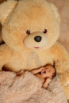 Duas semanas de idade bebê recém-nascido dormindo no ursinho de pelúcia