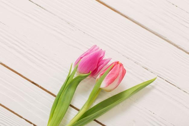 Duas tulipas cor de rosa em fundo branco de madeira