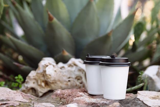 Duas xícaras de café para viagem xícaras de papel branco nas pedras atrás das pedras cresce um cacto