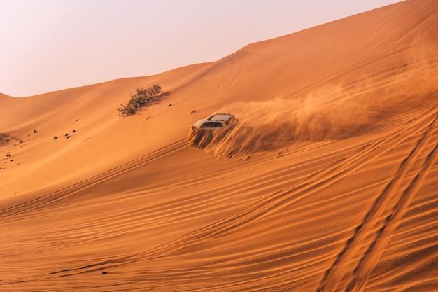Duna do deserto