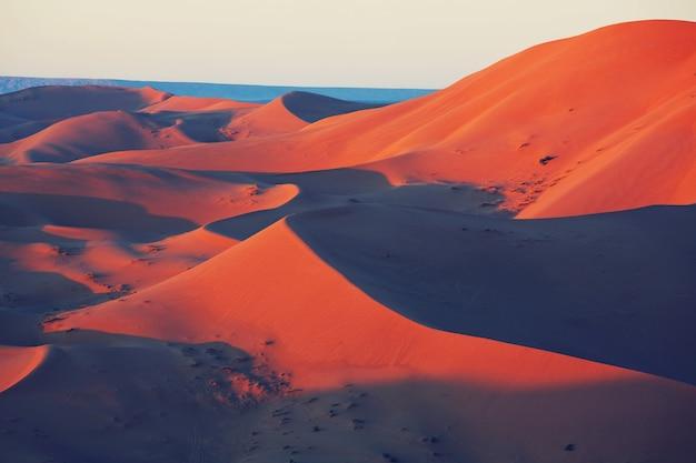 Dunas de areia cênicas no deserto