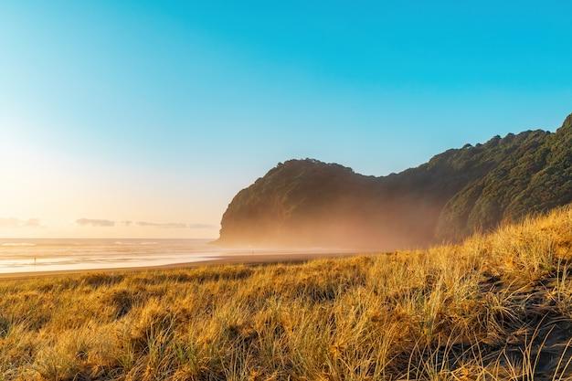 Dunas de areia cobertas de grama