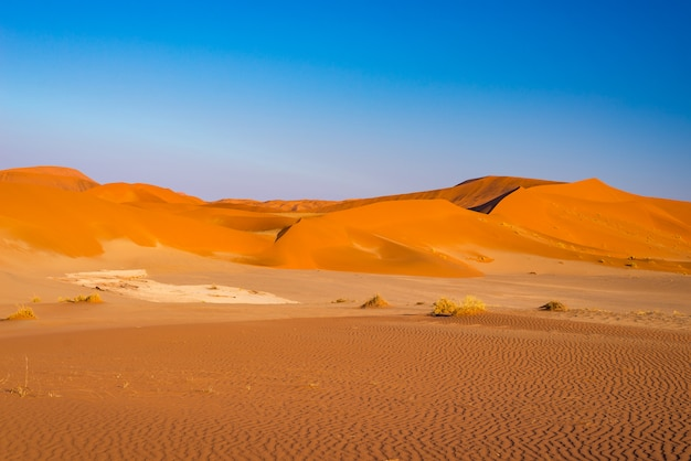 Dunas de areia de sossusvlei, parque nacional de namib naukluft, deserto de namib, destino cênico do curso em namíbia, áfrica.