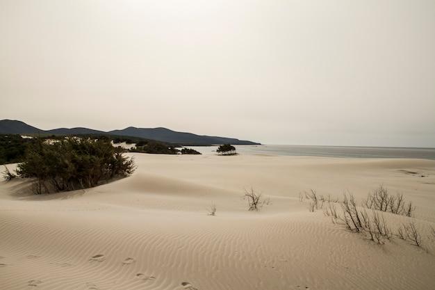 Dunas de areia delineadas formando uma paisagem lunar com mar cinzento e céu chuvoso de inverno