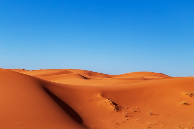 Dunas de areia do deserto do saara.