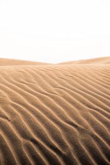 Dunas de areia quentes laranja no verão no delta do rio