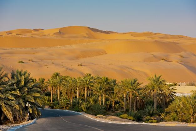 Dunas do deserto no oásis de liwa, abu dhabi, emirados árabes unidos