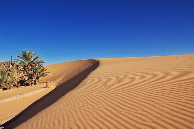 Dunas na cidade abandonada timimun no deserto do saara, argélia
