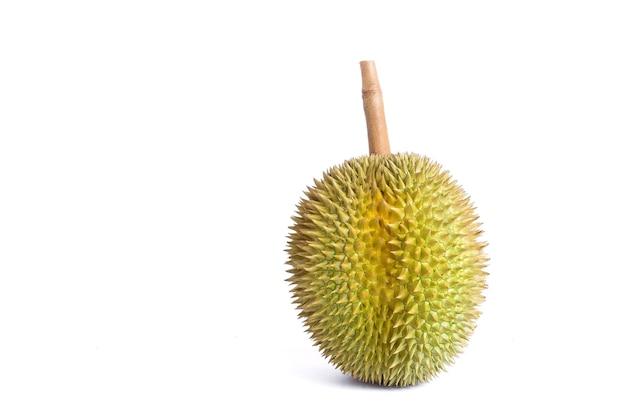 Durian como um rei das frutas na tailândia. possui odor forte e casca coberta de espinhos.