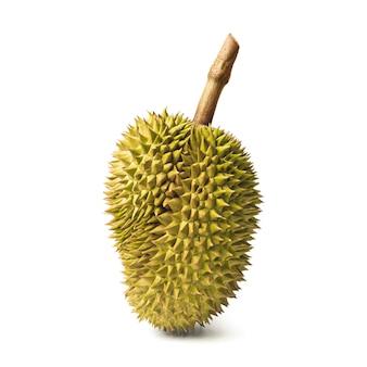 Durian isolado no fundo branco. rei das frutas na tailândia.