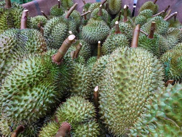 Durian, rei da fruta tailandesa, está exportando para a china