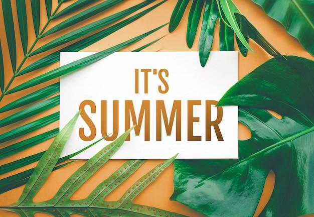 É um texto de verão com folhas tropicais em fundo de cor pastel. para design de anúncios promocionais