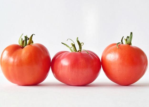 Eco tomates do jardim