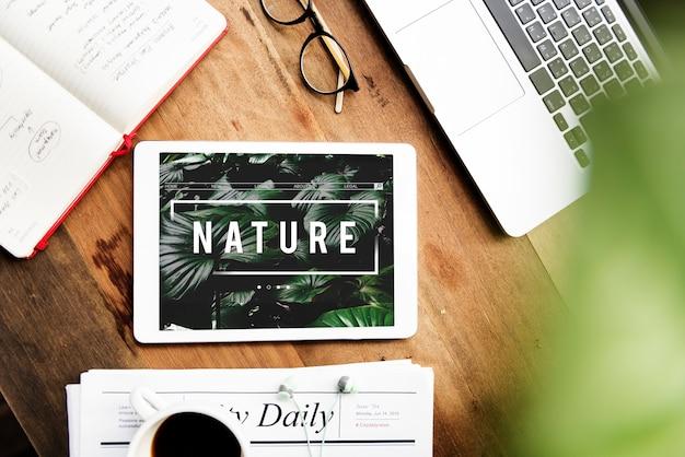 Ecologia fresca exuberante natureza natural