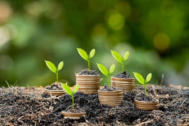 Economizando dinheiro e crescimento financeiro e de negócios.